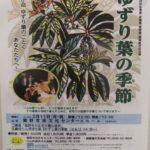 演劇「ゆずり葉の季節」裾野公演