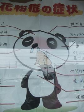 鼻水パンダ.JPG